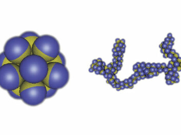 Figure 2: If the different parts of a patchy capsule attract each other, then they have the ability to self-organize in different kinds of structures. (Illustration: Physics Today, Angelo Cacciuto/Erik Luijten)