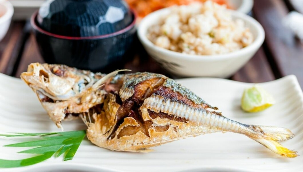 """Saba shio (""""salt-grilled mackerel"""") is the most popular way to eat Norwegian mackerel in Japan. It is a simple and tasty dish that you can often get at restaurants. (Photo: Colourbox)"""