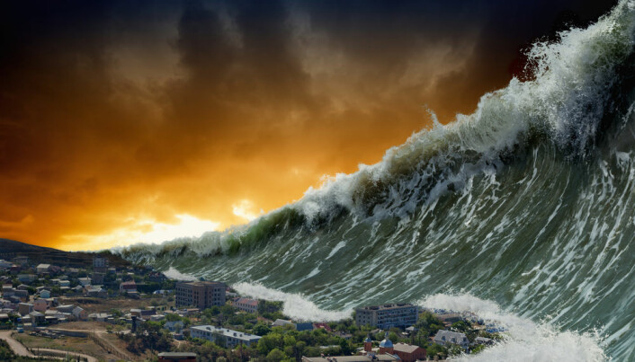 What can we learn from natural disasters?