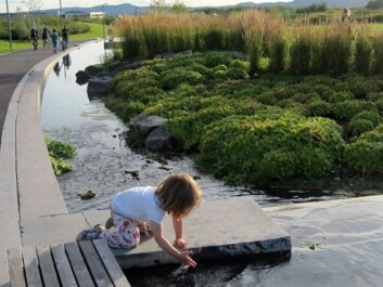 Landscape architects at Fornebu, just outside Oslo, have created surface water systems close to playgrounds, to the delight of children. (Photo: Bjørbekk & Lindheim)