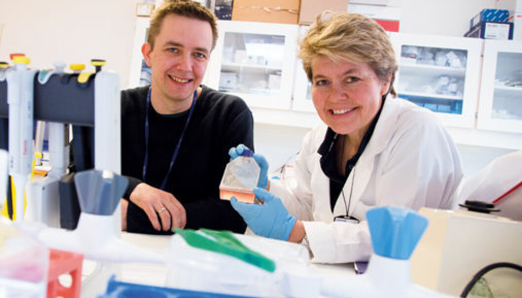 Researchers Arne Yndestad and Bente Halvorsen. (Photo: Yngve Vogt)