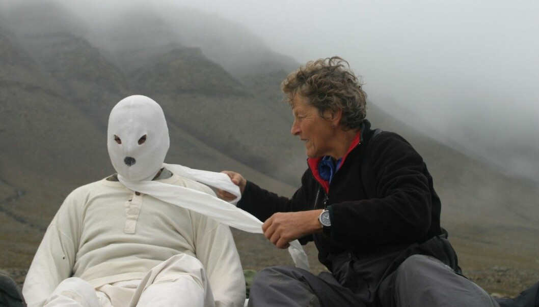 One of the scientists behind the study being dressed up as a polar bear. (Photo: M. Kardel)