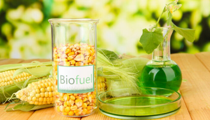 Biofuel breakthrough: scientists use GMO yeast to produce fuel