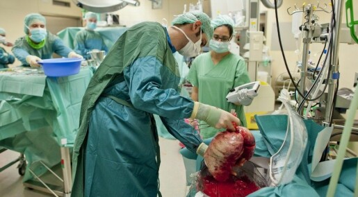 Salvaged donor lungs can save lives