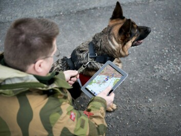 Training materials can be carried into the field on tablets and mobile phones. A dog trainer in the Home Guard uses an app developed by in the new project from FFI. (Photo: FFI)