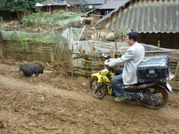 A hyperspectral camera on its way to a mission prospecting for rare  earth elements in Vietnam. At one site the equipment was attacked by an overprotective water buffalo with a calf. (Photo: Hallvard Skjerping, NEO)
