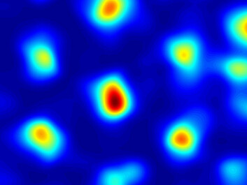A graphical representation of where a grid cell is activated. The warm colours show where cell is most active and the blue areas are where it is idle. The picture shows the activity of a single grid cell and its response pattern, which forms a set of coordinates that the brain processes into a map. Thus, these cells give the brain a kind of inner GPS. (Photo: Kavli Institute for Systems Neuroscience)