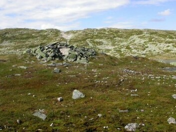Ruins of one of the stone huts at Sumtangen. The soil underneath the shallow turf is densely packed with reindeer bones to a depth of half a metre. (Photo: S. Indrelid, University Museum of Bergen)