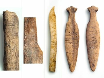 Bones with runic inscriptions, found in the rubbish heaps at Sumtangen. (Photo: S. Skare, University Museum of Bergen)