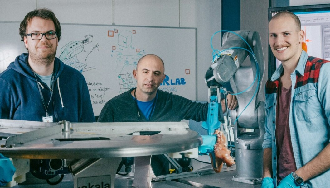 """This is the team behind the robot """"Gribbot """", who has a special eye for chicken. From the left: Elling Ruud Øye, Ekrem Misimi and Aleksander Eilertsen at SINTEF. (Photo: TYD/SINTEF)"""
