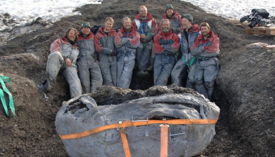 Forty tonnes of material were excavated by hand for each excavation. Both students and volunteers assisted in the pursuit of the sea monsters from the age of dinosaurs. (Photo: Jørn Hurum / NHM / University of Oslo)