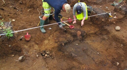 Norway's top archaeological finding in 2014