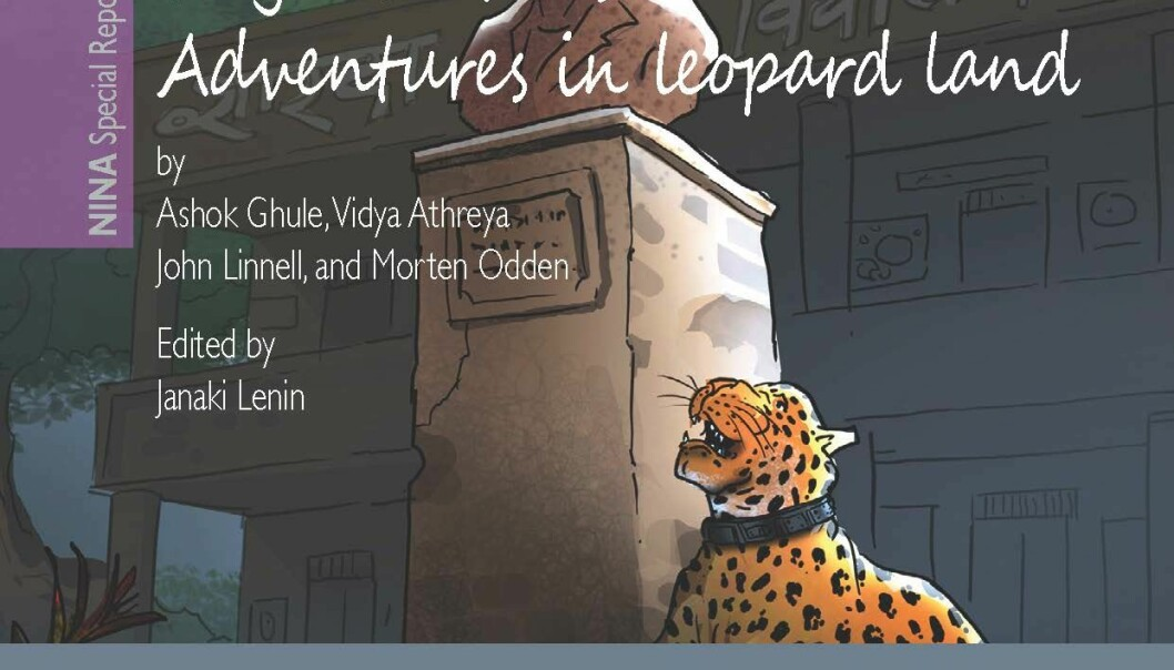 Adventures in leopard land. (Illustration: NINA)