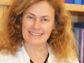 Professor Cecilie Svanes, Centre for International Health, University of Bergen. (Photo: UiB)