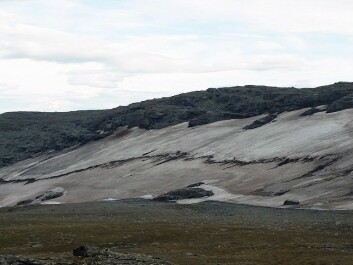 Kringsollfonna photographed in July 2014. The snow patch is 400 m wide and 100 m long. By October 2014, more than four meters had melted. The dark band across the glacier is organic material emerging from the snowmelt, which contains both macrofossils and manmade objects. /Photo: Geir Vatne, NTNU)