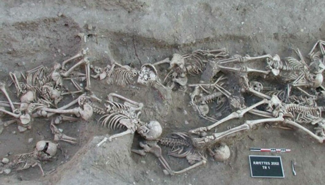 A new study finds no evidence that the plague was harboured by rodent populations in Europe between outbreaks. (Photo: S. Tzortzis / Wikimedia Commons)