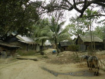 In this village in Bangladesh electricity was introduced for the first time. Even a single light bulb greatly simplified the life of families. (Photo: Hanne Cecilie Geirbo)