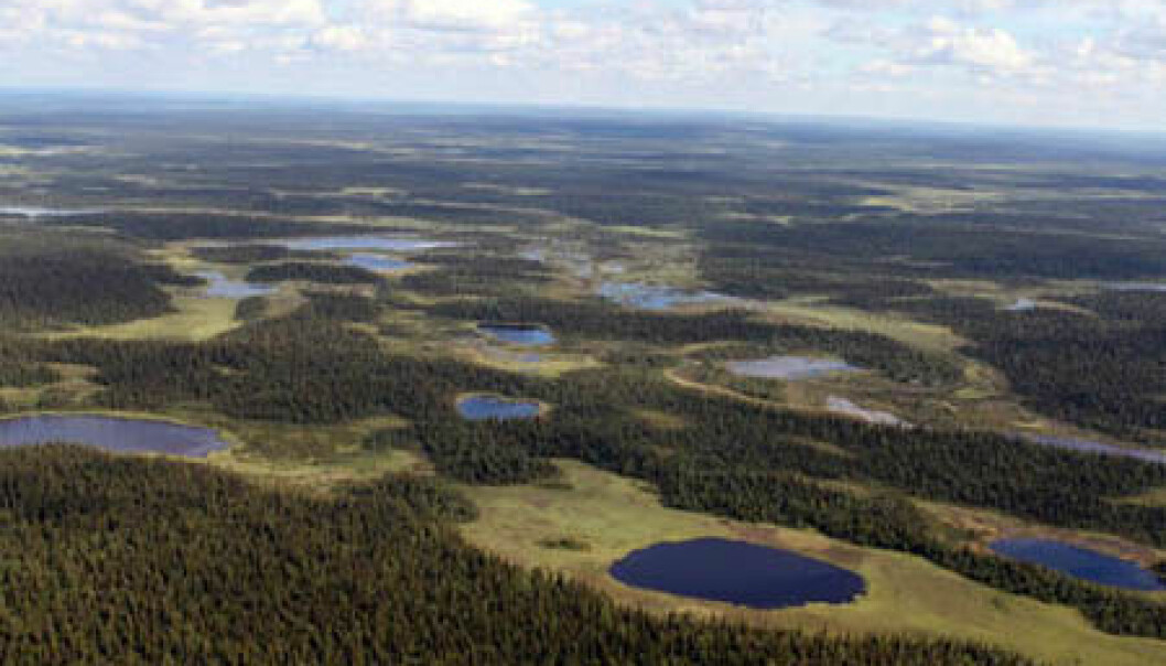 Panorama from Russia's Imadra-Varzuga Greenstone Belt, where some of the FAR DEEP project drilling took place. (Photo: Victor Melezhik)