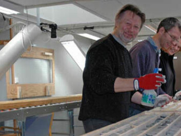 Victor Melezhik, Aivo Lepland and Melanie Mesli examining drill cores at the NGU laboratory. (Photo: Gudmund Løvø)
