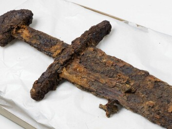 A sword was uncovered in the same place as the shield. (Photo: Åge Hojem / NTNU University Museum)