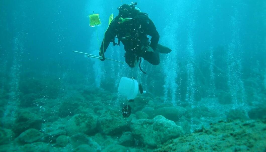 Diver studying ocean acidification at CO2 vents (Photo: G. Caramana)