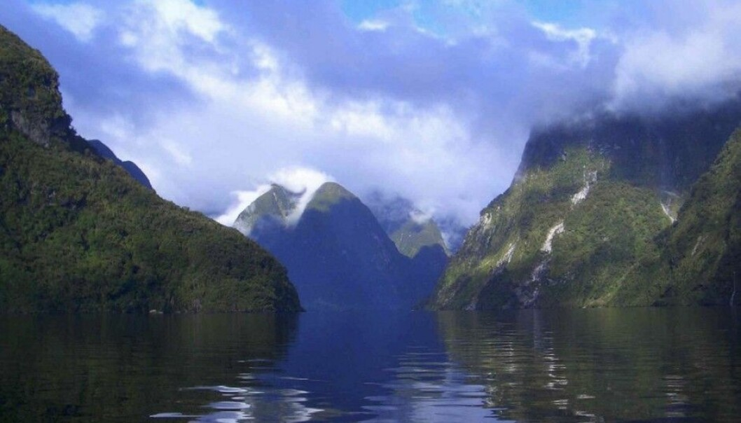Steep fjord slopes and a deep seabed ensure that organic substances get buried in sediments before chemical reactions can free their carbon. This makes fjords fantastic natural helpers in climate change mitigation. Doubtful Sound in New Zealand's Fiordland, pictured here, is one of the fjords round the world included in a study published by Nature Geoscience. (Photo: Candida Savage)