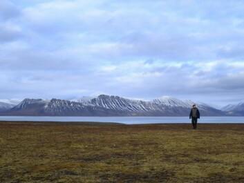 Bjerknes in the tranquillity of the plain at Ingebrigtsenbukta.
