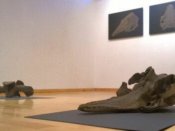 The exhibition at Galleri Svalbard gave visitors a new and unexpected glimpse of Norwegian whaling history from a place that few residents have even visited. (Photo: Trond Kasper Mikkelsen)