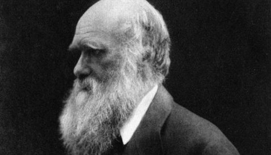 Darwin in the last years of his life. A Norwegian who was living on the Galápagos Islands when Darwin visited the archipelago as a young man may have inspired him. (Photo: Unknown/Public Domain)
