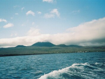 Floreana Island in the Galápagos. Lawson received Darwin on this island in 1835. (Photo: Muggmag)