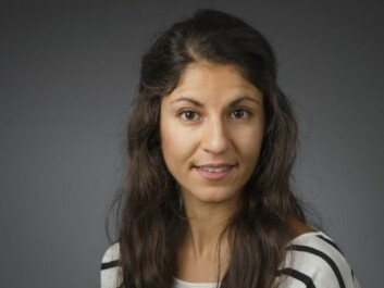Abrak Saati found that democracy has made fairly steady headway in 24 of the 48 countries she investigated. In 11 countries progress was made initially but followed by major setbacks. In ten countries democratic decline dominated from the outset. (Photo: Mattias Petterson/Umeå University)