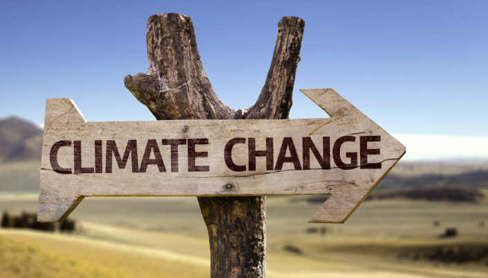 Is the UN too slow to tackle climate change?