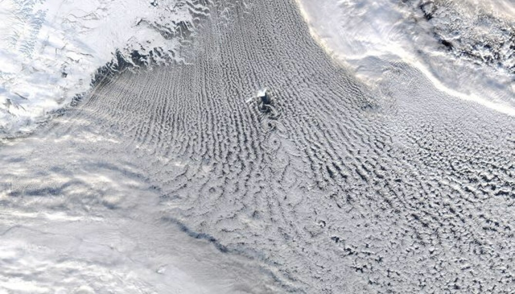 Satellite image showing clouds over the Greenland Sea downstream of the ice edge during conditions where there was a large transfer of heat and moisture from the ocean to the atmosphere. (Photo: NASA)