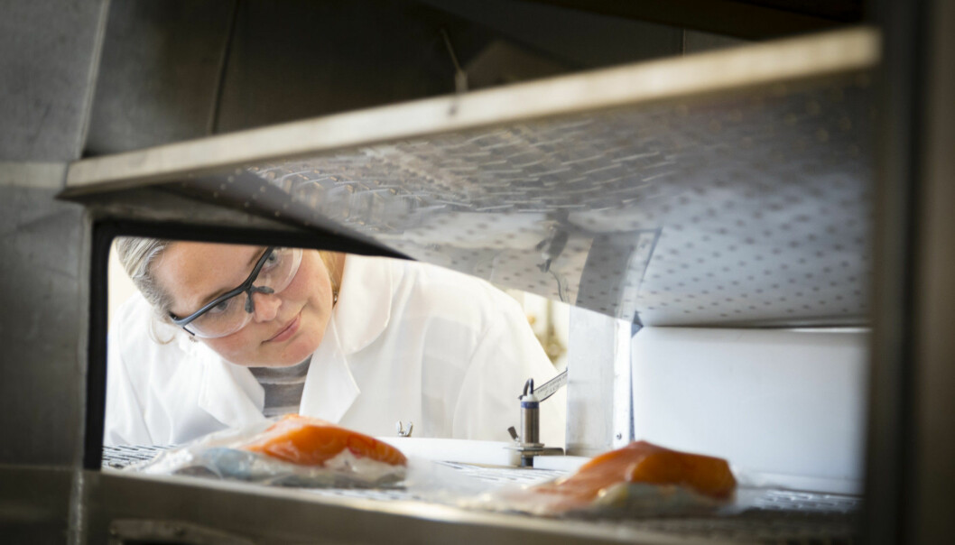 Food retains its freshness longer if it is kept in a state somewhere between fresh and frozen. This method ought to be more widely used because it helps to improve the utilisation of raw materials and to reduce waste, believe scientist Ingrid Claussen at Sintef. (Photo: Thor Nielsen)