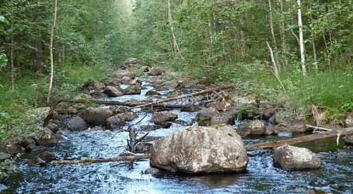 It takes decades to restore a river