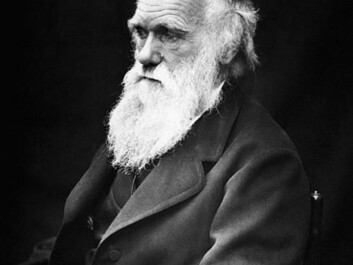 Charles Darwin, here at age 60 in 1869. (Photo: J. Cameron, Wikimedia Commons)