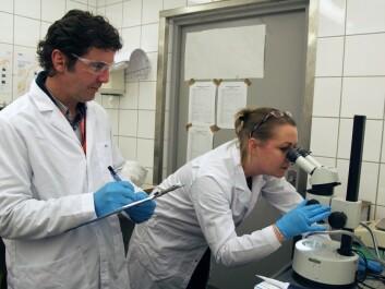 Adam Lillicrap and Ailbhe Macken. (Photo: Harald Borchgrevink Bonaventura)
