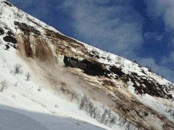 Farestveit witnessed this second avalanche that released in Kvassdalen. (Photo: NPRA)