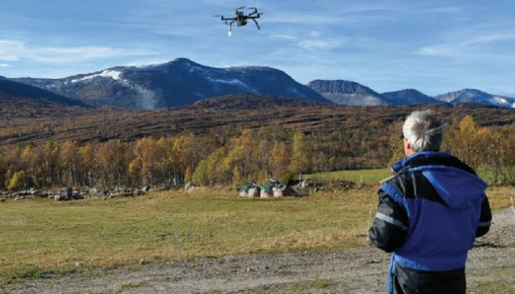 In October, Svein-Olaf Hvasshovd and his colleagues in the control systems group at NTNU completed a successful test using a drone to find lost sheep. (Photo: Morgan Frelsøy/OPP.no)