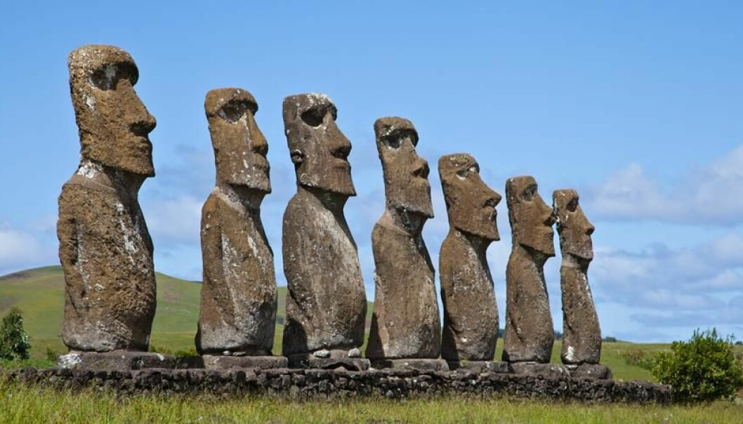 The inhabitants of Easter Island used so much of their island's palm forest for erecting their impressive Moai statues that eventually they lacked wood for building houses and boats. (Photo: Colourbox)