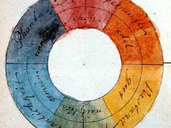 Colour wheel designed by Goethe, attributing various symbolic values to the colours. (Illustration: Johann Wolfgang von Goethe / wikimedia commons.)