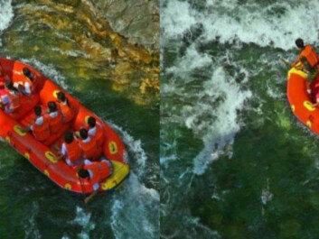 Rafting before and after the photo has been changed. Can you spot the differences? (Photo: Steven Le Moan, NTNU)
