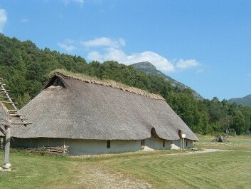 Reconstruction of a farmhouse from the Bronze Age at Landa in Forsand, Rogaland County. This is approximately how longhouses could have looked in the Stone Age too. (Foto: Hallvard Nygård / Wikipedia)