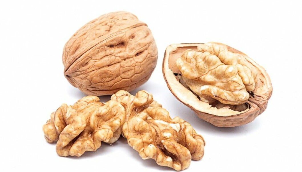 Are walnuts really fruit? (Photo: Luiscar74 / Shutterstock / NTB scanpix)