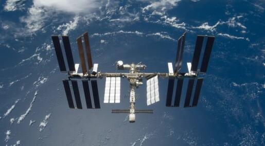 Growing Norwegian weeds on international space station