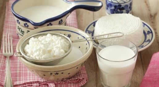 Milk proteins have slimming effect