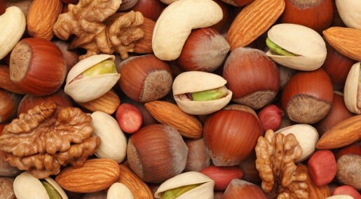 Nut consumers live longer lives