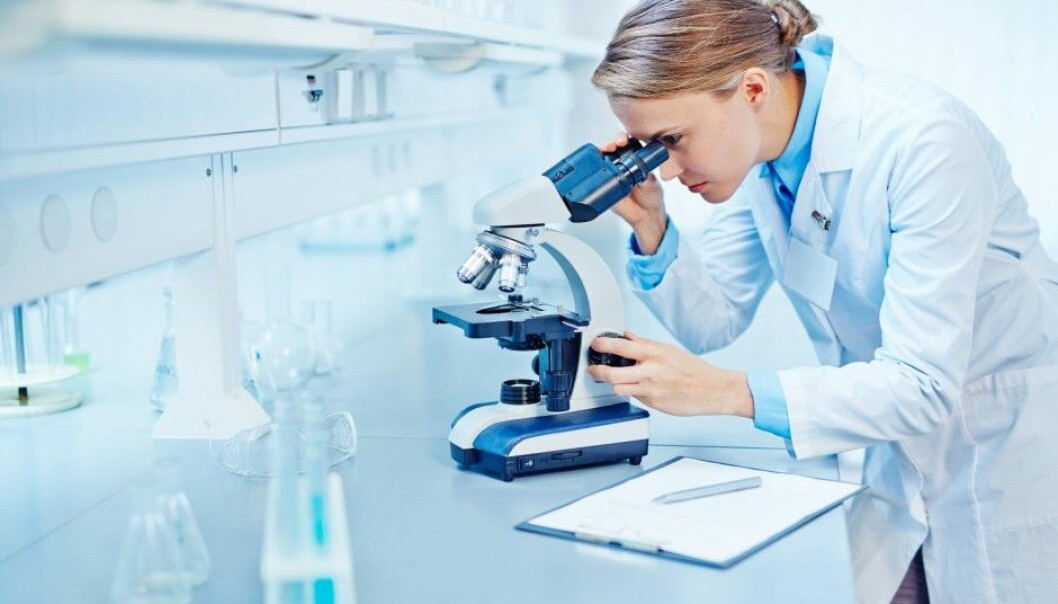 Young, female researchers are more sceptical about research as a future career choice, especially when their current jobs are temporary. Men are more optimistic. (Photo: Shutterstock/NTB Scanpix)