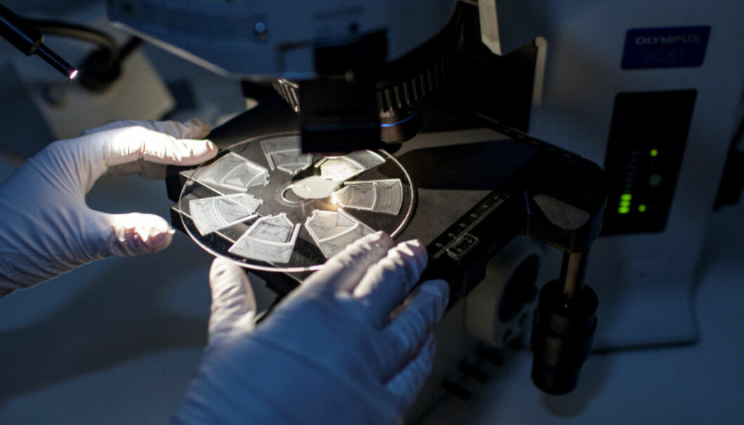 This new analytical technique will make it easier for doctors to provide patients with safe and correct antibiotic treatments. The test analyses a patient's blood samples by scanning across a specially designed disc-shaped cartridge which is about the same size as a traditional CD. But instead of audio tracks, the cartridge is equipped with small channels and compartments in which the blood sample reacts with a selection of allergens. Photo: Remy Eik-Nikolaisen