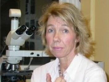 Prof. Inger Nina Farstad. (Photo: Oslo University Hospital)